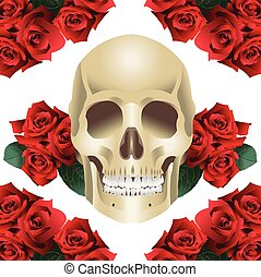 Human Skull Modern Style and roses