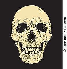 Human skull on black background. Hand drawn vector illustration.