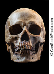 Terrible human skull isolated on black background