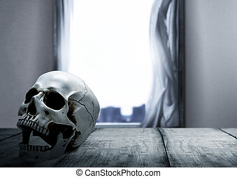 Human skull on the wooden table