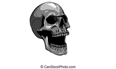 human Skull Talking Loop Side View - Skull Talking Loop -...