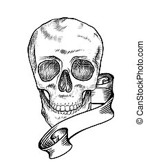 Human skull with a hatching and ribbon. Black and white contour illustration of a skull front view with scroll. Vector template for halloween