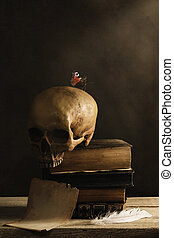 human Skull with Butterfly and a empty Page with Feather
