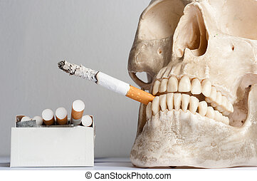 human skull with cigarettes against isolated white background