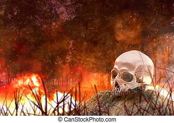 Human skull with fire and smoke on fire in the forest