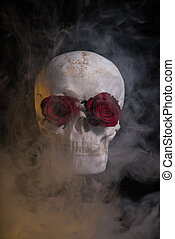Human skull with red roses covered with smoke