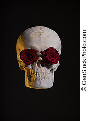 Human skull with red roses in eye sockets