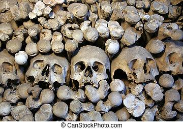 Human skulls and bones 1 - Bones of victims of black death