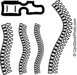 human spine silhouettes - vertebra brush