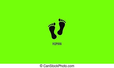 Human step icon animation best simple object on green screen background