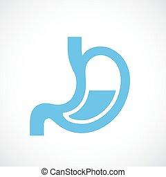Human stomach vector icon