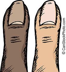 Human Thumb - Dark and light-skinned versions of a human ...