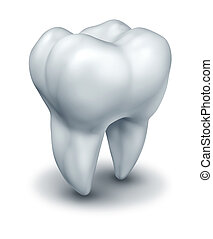 Human tooth dental symbol representing dentist medicine and dentistry surgery represented by a white single molar tooth on a white background.