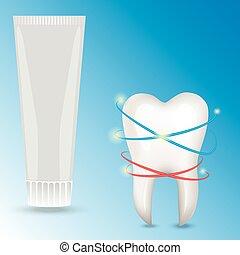 human tooth illustration.