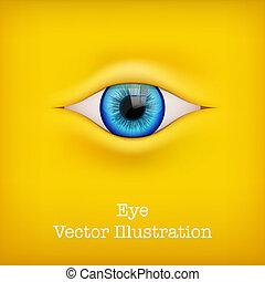 human, vetorial, illustration., fundo, eye.