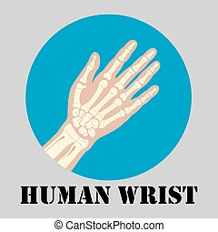 Human wrist emblem - Human wrist joint emblem, medicine...