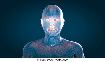 Human xray, human anatomy facial recognition, 3D Animated