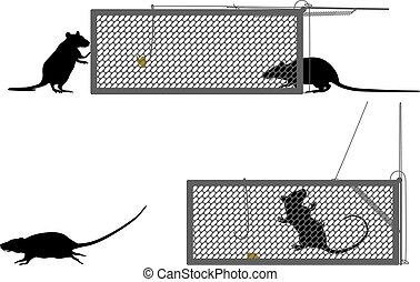 Humane rat trap - Editable vector illustration of a rat...