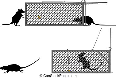 Humane rat trap - Editable vector illustration of a rat...