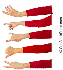 humano, aislado, brazo, mano