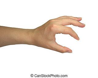 humano, dama, tenencia de la mano, su, objeto, aislado, encima, blanco