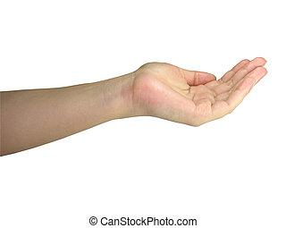 humano, encima, objeto, aislado, tenencia de la mano, blanco, dama, su