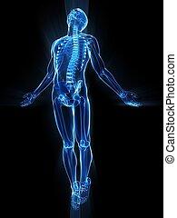 humano, levantamiento, cuerpo