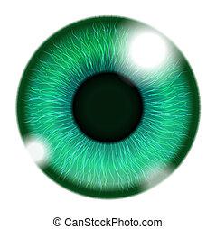 humano, ojo verde