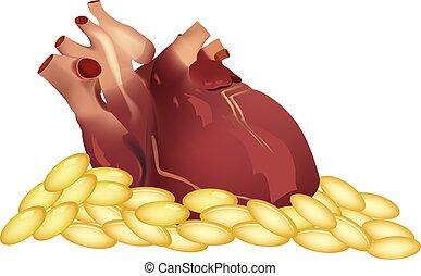 humano, píldoras, corazón, encima, órgano, omega