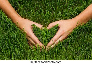 Human's hands making heart symbol in grass