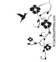 humminbird, 以及, 花