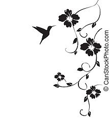 humminbird, y, flores