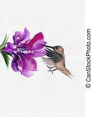 Humming bird with flower