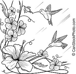Humming-birds and flowers on a white background