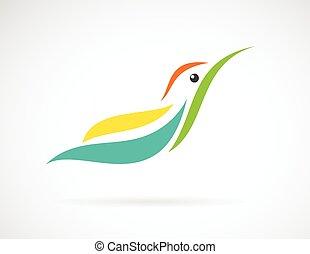 humming, imagem, pássaro, fundo, vetorial, desenho, desig., branca, seu, hummingbird