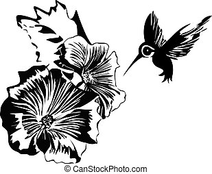 hummingbird and flowers - The illustration shows the...