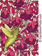 Hummingbird and fuchsia flowers hand drawn illustration. Tropical design.