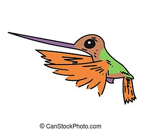 Hummingbird cartoon hand drawn image