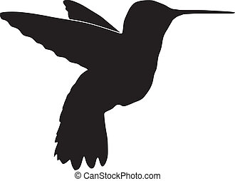 hummingbird - silhouette of hummingbird