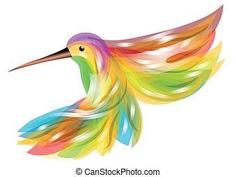 hummingbird. abstract bird isolated on white background