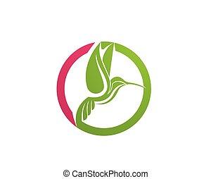 Hummingbird Logo and symbols icons Template app