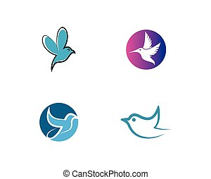 hummingbird, logo, ikona, wektor, ilustracja, szablon