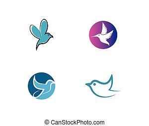 Hummingbird logo template vector icon illustration