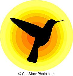 Hummingbird silhouette over sun symbol. Vector design