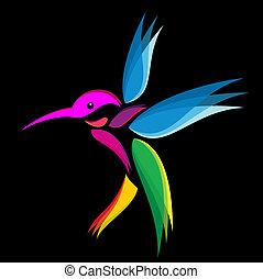 Hummingbird vibrant colors on a black background