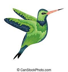 hummingbird whit flowers vector illustration