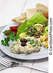 middle eastern cuisine - hummus, falafel, baba ghanoush, ...