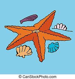 Humorous drawing on starfish