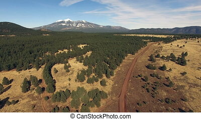 Humphrey's Peak Road National Forest Arizona Southwest...