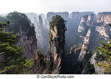 hunan, zhangjiajie, liget, kína, erdő, nemzeti